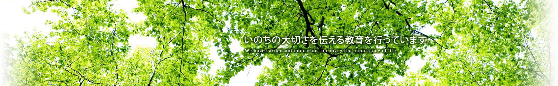いのちの大切さを伝える教育を行っています